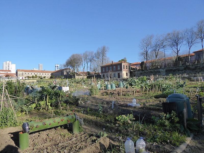 Jardin potager collectif dans l'hôpital Conde Ferreira – Porto.