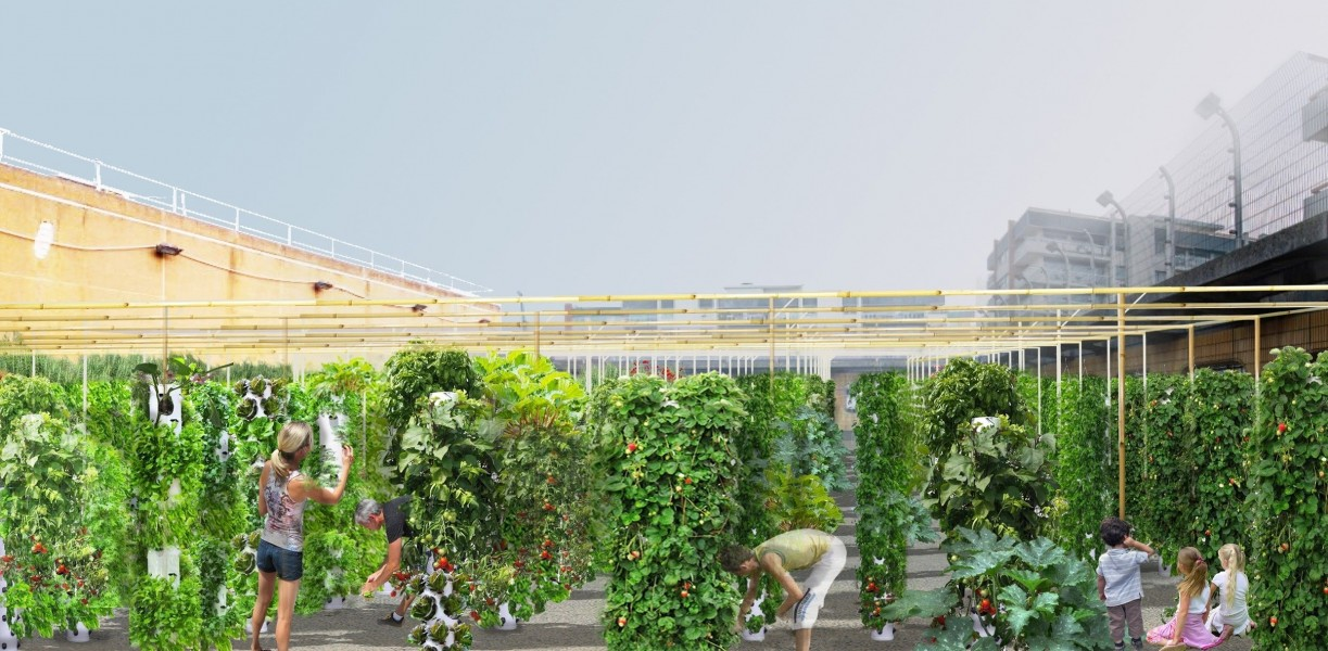 Le projet du gymnase de la Cour des Lions dans le 11e.