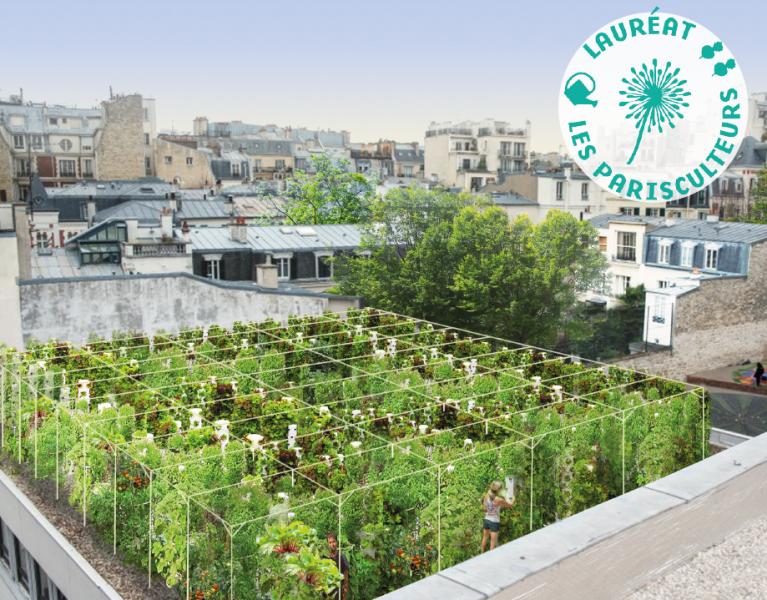 Toit agriculture urbaine collège Eugène Delacroix