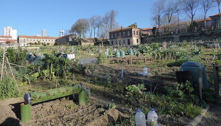 Jardin potager collectif dans l'hôpital Conde Ferreira à Porto.