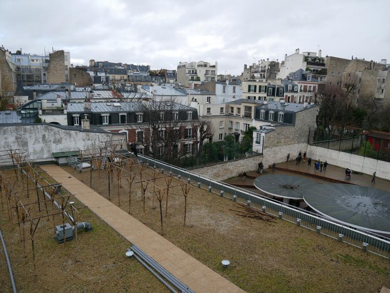 Hugo et Romain d'Agripolis commencent l'installation de leur projet sur le toit du collège Delacroix (16e). © Sarah Langinieux-Cityside