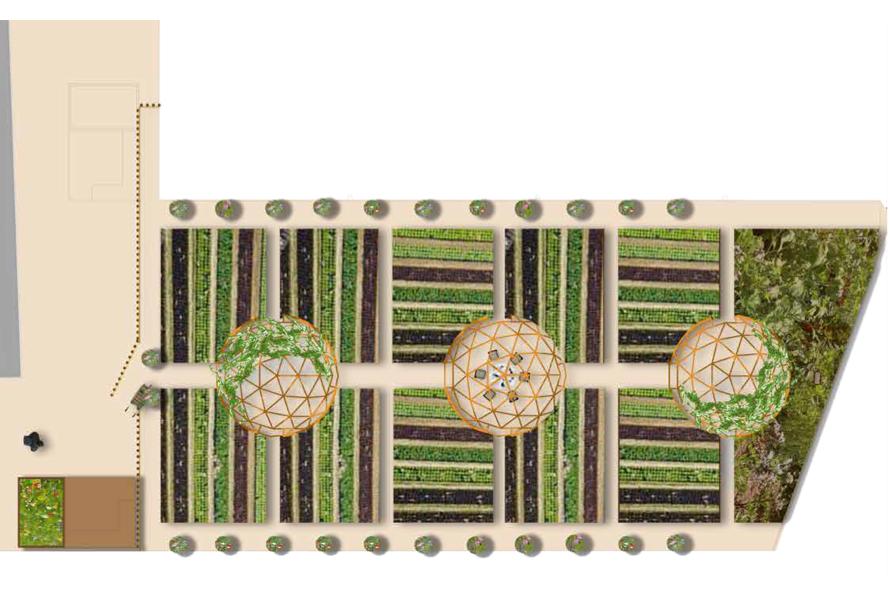 © Le Potager du quartier Latin, 5e : un projet de permaculture proposé par l'équipe lauréat A. Chamberland et A. Ducrocq.