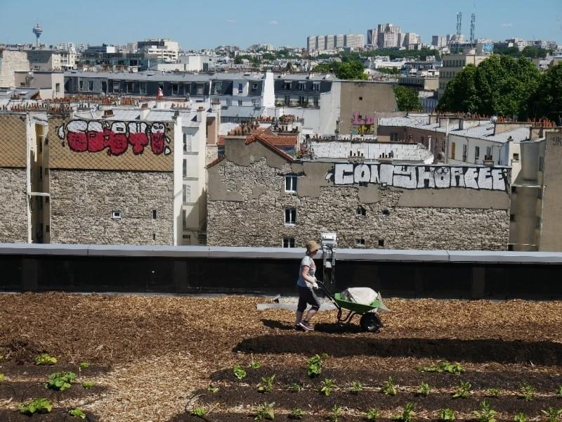 Facteur Graine. Source : © Sarah Langinieux - Cityside