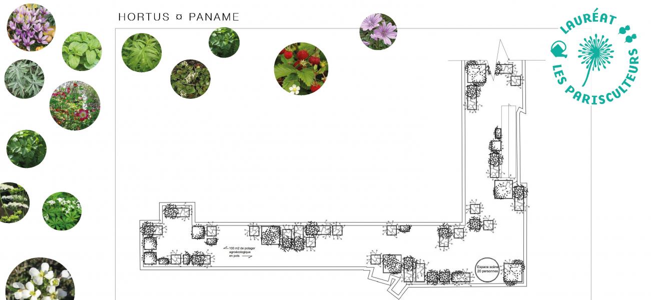 Projet lauréat : Hortus paname