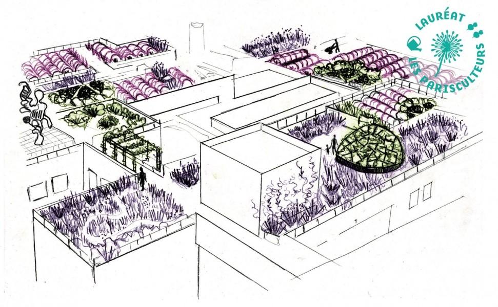 Projet lauréat : Le pré-haut de Robert Debré. Source : Ferme Florale Urbaine®