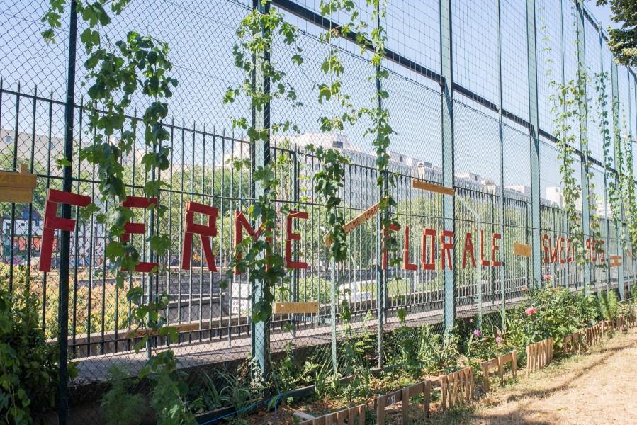 Site centre sportif Charles Rigoulot, Mur. Source : Mairie de Paris Antoine Polez ®