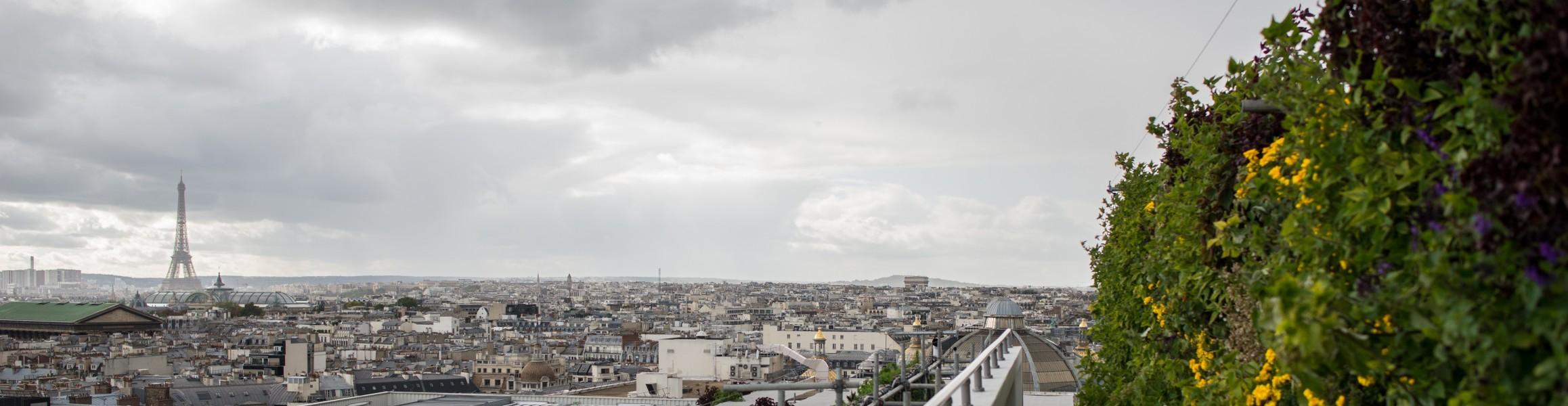 Source : Ville de Paris Christophe Noel ©